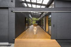 residential projects - Darryl Church Architecture
