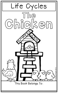 The Life Cycle of a Chicken (A Science Book and Activities for Teaching Kindergarten, Teaching Resources, Farm Fun, Color Copies, Animal Habitats, Comprehension Activities, Water Cycle, Primary Classroom, Science Books