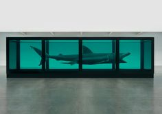 "'LEVIATHAN' (2006-2013) | Damien Hirst: 'Hirst acquired this 6.8 metre-long basking shark with the assistance of London's Natural History Museum, after it was found washed up on a Cornish beach. Stating the shark looked like a ""monster from the deep"", Hirst titled the work after the mythical sea creature depicted in the Hebrew Bible and Christian Old Testament. Leviathan is also a reference to the 17th century British theoretician Thomas Hobbes' work of social contract theory.'     ✫ღ⊰n"