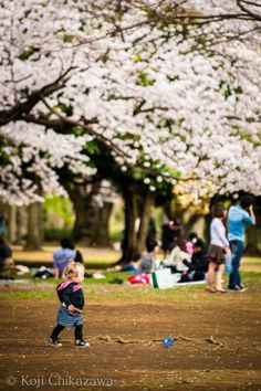 Tokyo Yoyogi Park Tokyo Trip, Tokyo Travel, Japan Tourism, Yoyogi Park, Tokyo Japan, Dolores Park, Japanese, My Love, Life