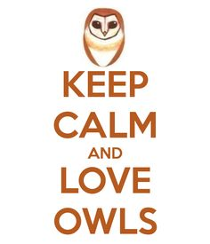 KEEP CALM AND LOVE OWLS -                                                                                                                                                                                 More