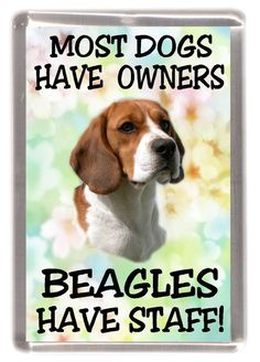 "Beagle Dog Fridge Magnet ""Most Dogs ...... Beagles Have Staff!"" by Starprint #Beagle #DogHealth"