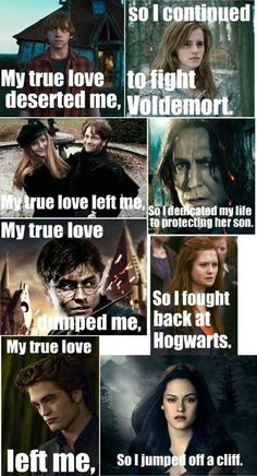 Harry Potter love story vs. Twilight love story -_- HP wins.