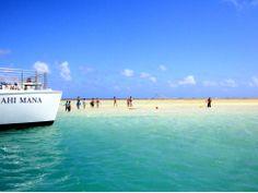 Kaneohe Bay Sandbar Captain Bob's Snorkel Cruise photos, Oahu / Waikiki tours & activities, fun things to do in Oahu / Waikiki | HawaiiActiv...