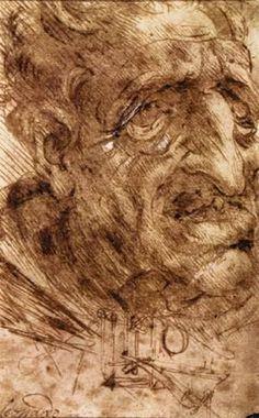 Da Vinci - love this!