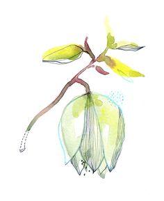 yucca, Cécile Hudrisier