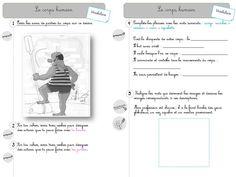 Enrichir son vocabulaire (thèmes) - la classe de stefany Cycle 3, French Teacher, France, Assessment, Montessori, Teaching, Activities, English, Learning To Write