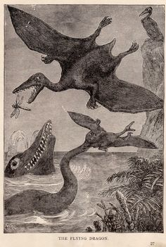 Sea monsters and pterodactyls battle.