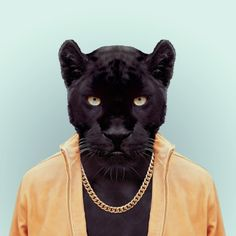 Yago Partal takes photos of Animals Dressed Like Humans. The Zoo Portraits are made by blending an animal portrait with the suitable illustration of clothing. Animal Heads, Animal Faces, Funny Animals, Cute Animals, Zoo Animals, Panthera Pardus, Photocollage, Pet Clothes, Oeuvre D'art