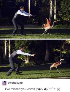 Promo pics! Jarvis, just stay away from the devil flamingo, let Howard take care of it! He was the one who wanted that pink monster!