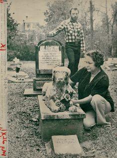 Abandoned pet cemetery has eerie, murderous past | NOLA.com