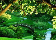Google Image Result for http://www.flash-screen.com/free-wallpaper/stunning-green-tree-over-water-wallpaper-present-you-the-fantastic-green-paradise/bridge-in-green-garden,1990x1440,63244.jpg