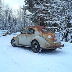 Old VW's and girls. Vw Rat Rod, Rat Rods, Audi Gt, Combi Wv, Triumph Spitfire, Rusty Cars, Volkswagen Bus, 1967 Mustang, Vw Beetles