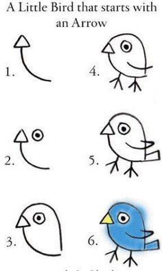 How to Draw a Bird: notebook for five levels of environmental organization.