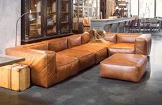 24 Comfy Modern Leather Brown Sofa Design Ideas for Living Room – Page 18 of 26 Sofa Furniture, Furniture Makeover, Furniture Design, Brown Sofa Design, Cognac Leather Sofa, Modern Leather Sofa, German Decor, Leather Sectional Sofas, Luxury Sofa