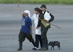 Josefo the pig.