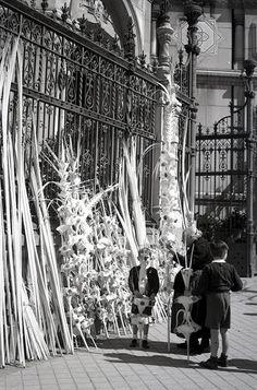 Comprando las palmas en el exterior de la Iglesia de San Manuel y San Benito en Madrid, 1953. Via @CampuaFotografo