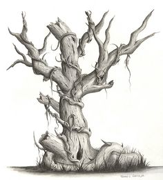 Original Drawing  Pencil  Dead Tree by MageCraft on Etsy, $75.00