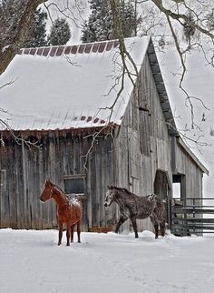 Horses, old barns и rustic barn. Farm Barn, Old Farm, Country Barns, Country Life, Country Living, Country Roads, Country Charm, Barn Pictures, Snowy Pictures