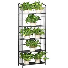 Eight24hours Heavy Duty Mesh Plant Flower Stand Shelves Pot Display... (€57) ❤ liked on Polyvore featuring home, home decor and mesh pots