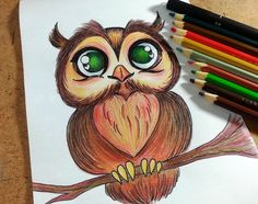 Como desenhar coruja - passo a passo drawing and painting crafts цветные ка Easy Pencil Drawings, Cool Art Drawings, Colorful Drawings, Animal Drawings, Drawing Sketches, Colour Pencil Shading, Color Pencil Sketch, Art Sketchbook, Creations