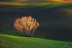 Фотография Inner light автор Vadim Balakin на 500px