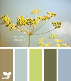 Design Seeds - color palates for family pictures Colour Pallette, Color Palate, Colour Schemes, Color Combos, Grey Palette, Wall Colors, House Colors, Paint Colors, Design Seeds