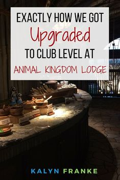 Disney's Animal Kingdom Lodge is one of my favorite places to say, but the Kilimanjaro Club Level is even better. Find out exactly how we got upgraded to Club Level while paying only for a Standard Room at the resort.