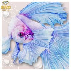 5D DIY Diamond Painting. Soft Blue Betta Fish Drawing. Square drill, 5 kit sizes to pick from.