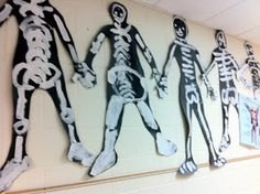 anatomy art projects for kids