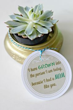 Succulent Mason Jar Crafts with Free Printable for Mother's Day