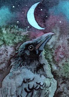 Crows Ravens: Raven beneath a Crescent Moon. Crow Art, Raven Art, Bird Art, Blackbird Singing, Quoth The Raven, Dark Wings, Jackdaw, Crows Ravens, Good Night Moon