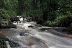 Warme Bode Harz  Prints: https://goo.gl/KZ8ikK Downloads: https://goo.gl/O0ztOj Info: https://www.foto-wandern.com/galerie/warme-bode/  ~~~ #harz #outdoors #hiking #fotokurs #fotokurse #fotowandern  www.FOTO-WANDERN.com