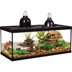 online shopping for Tetra Aquarium Reptile Glass Kit Two Dome Lamps from top store. See new offer for Tetra Aquarium Reptile Glass Kit Two Dome Lamps Aquatic Turtle Habitat, Aquatic Turtle Tank, Turtle Aquarium, Aquatic Turtles, Aquarium Kit, Glass Aquarium, Water Turtles, Baby Turtles, Turtle Reptile