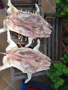 Comprar Cochinillo de Segovia para Asar - MasMit Carnicería Carnitas, Barbacoa, Bbq, Pork, Wings, Wood Burning Oven, Homemade Food, Delicious Food, Cook