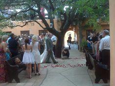Wedding coordinated by Deborah Bradley of La Grange, Texas. Wedding Vendors, Our Wedding, Wedding Ideas, Weddings, Fredericksburg Texas, Event Design, Shots, Trees, Events