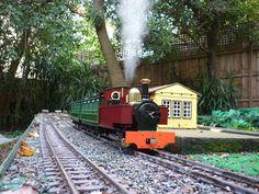 Steam in the Garden !
