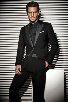 armani collection