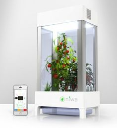 Hydroponic Gardening Ideas Grow your own indoor garden with the Niwa hydroponic greenhouse and smartphone app Hydroponic Growing, Hydroponic Gardening, Aquaponics Diy, Vegetable Gardening, Growing Tomatoes Indoors, Grow Tomatoes, Indoor Farming, Indoor Gardening, Outdoor Gardens