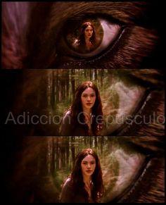 Jacob and Renesmee - Night and Day - Twilight Saga https ...
