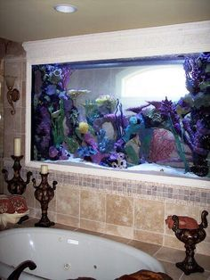 bathrooms with fish tanks - I can really enjoy this