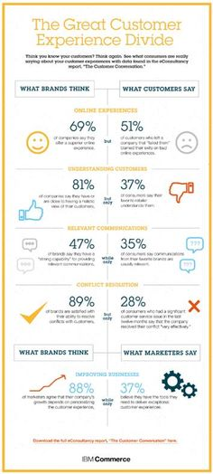 (Infographic) The Great Customer Experience Divide