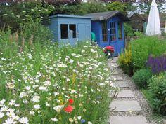urban wildflower garden Google Search Urban wildflower verge