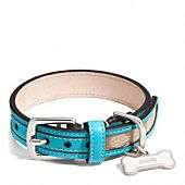 Love the color on this dog collar. It would look great my Dexter
