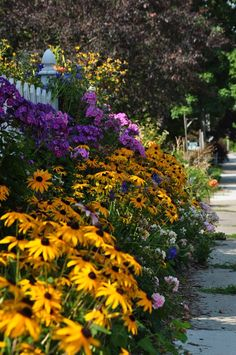 sidewalk, side yard, front yard, less grass, flowers, gardening, landscaping, brighten your day