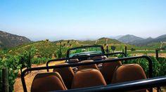 Malibu Wine Safaris for LAS TeamBuilding