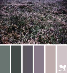 color field, by design seeds Colour Pallete, Colour Schemes, Color Patterns, Color Combos, Color Palettes, Sage Color Palette, Design Seeds, Color Balance, Colour Field