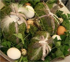 Moss and feather eggs
