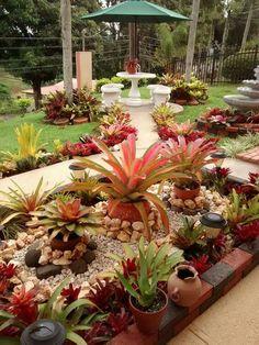 Jardín 1 Front Yard Landscaping, Landscaping Ideas, Landscaping