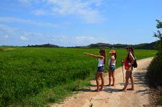 #arrozenruta es caminar en cullera